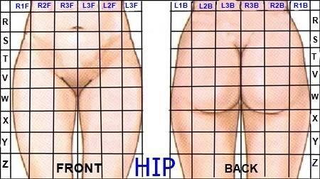 A hips outline.jpg