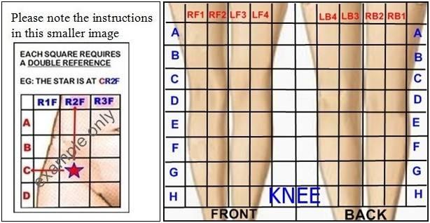 aa knee-references-horz.jpg