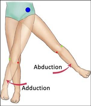 AbductionandAdduction.jpg