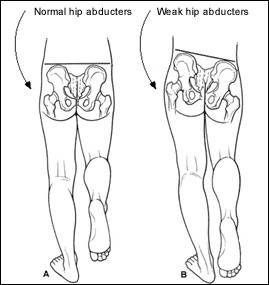 abductor exercise.jpg