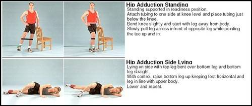 adductor exercises.jpg