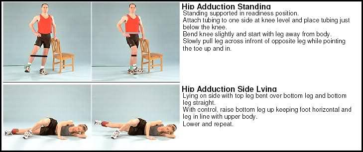 Adductor/groin pain exercises | Joint Replacement Patient Forum