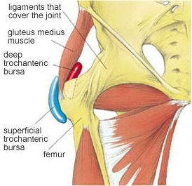 awww.physioworks.com.au_images_Injuries_Conditions_troch.bursa.jpg
