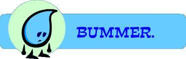 bummer 4.jpg