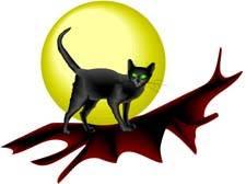 cat-full-moon.jpg