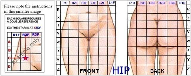 hip-references-horz.jpg