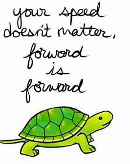 Tortoise forward.PNG
