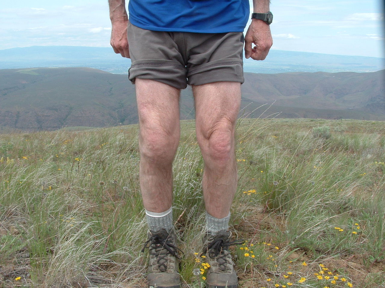 Where can you find knee replacement exercise videos?